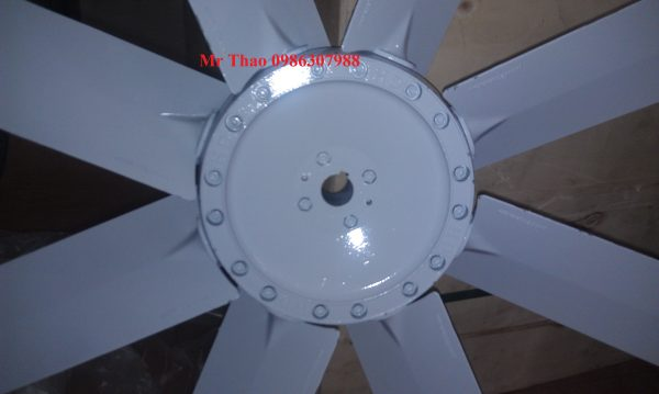 Copy of IMAG0048